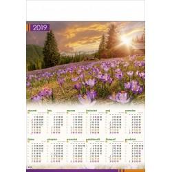 POLANA CHOCHOŁOWSKA   kalendarz B1