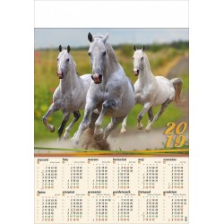 KONIE kalendarz B1