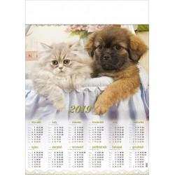 PRZYJACIELE kalendarz A1