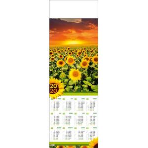 SŁONECZNIKI kalendarz 1/2 B1