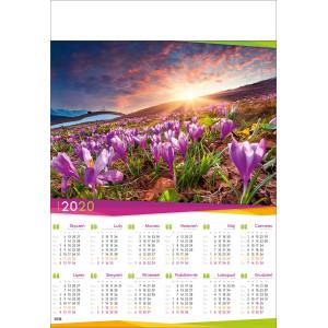 POLANA Z KROKUSAMI   kalendarz B1