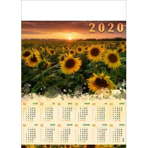 POLE SŁONECZNIKÓW kalendarz A1