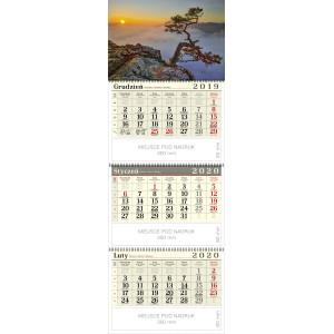 kalendarz trójdzielny spiralowany - SOSNA