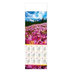 KROKUSY kalendarz 1/2 B1